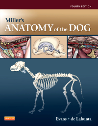 cover image - Miller's Anatomy of the Dog,4th Edition