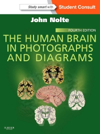 cover image - The Human Brain in Photographs and Diagrams,4th Edition