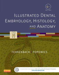 cover image - Illustrated Dental Embryology, Histology, and Anatomy,4th Edition