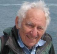 Wilfred Stein