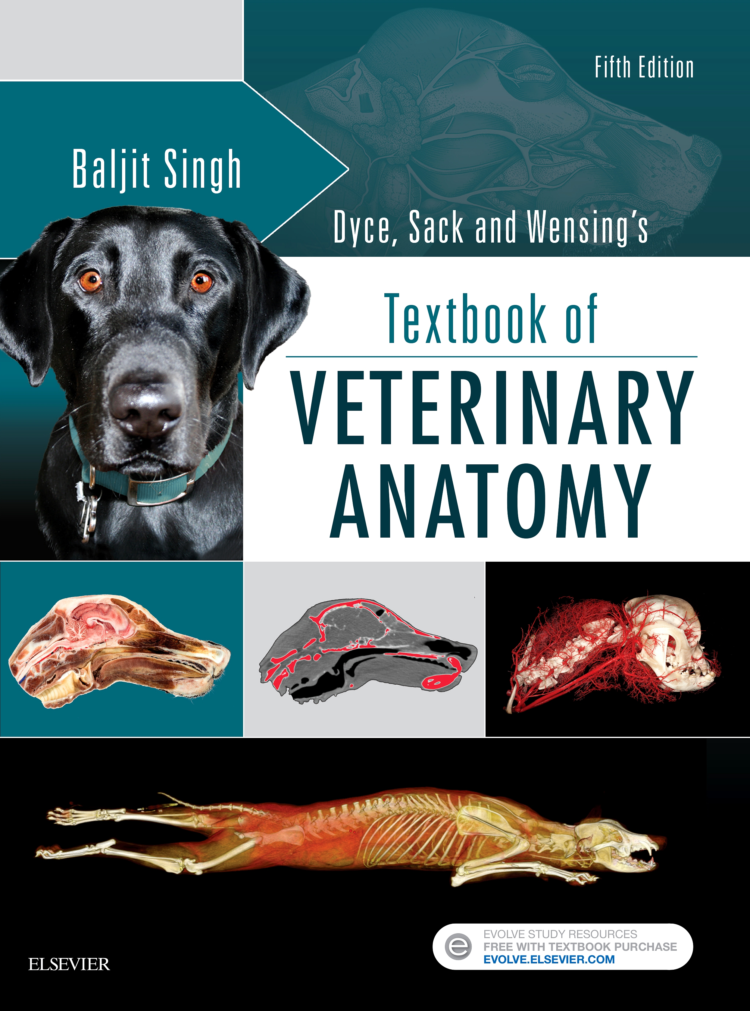 Evolve Resources For Dyce Sack And Wensings Textbook Of Veterinary