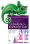 Elsevier Adaptive Quizzing for Egan's Fundamentals of Respiratory Care, 12th Edition