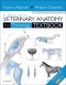 Introduction to Veterinary Anatomy and Physiology Textbook, 3rd Edition