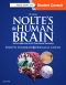 Evolve Resources for Nolte's The Human Brain, 7th Edition